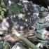 bilder-des-tages-19-08-02