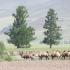 09_Mongolia_007