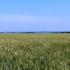 2012-06-russland-18